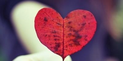 El arte de amarse, taller de autoestima