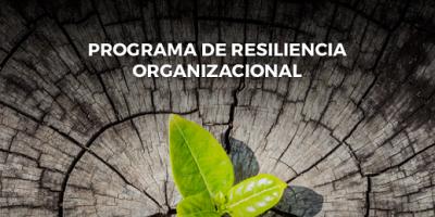 Octubre: Programa Resiliencia Organizacional